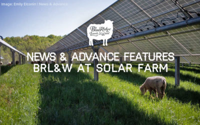 News & Advance Features BRL&W at Bedford Solar Farm