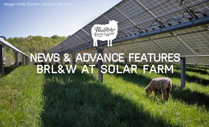 News & Advance Features BRL&W at Bedford Solar Farm